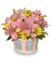 SALTWATER TAFFY Basket in Farmingdale, NY | MERCER FLORIST & GREENHOUSE INC.