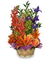 MULTI-COLOR MEMORIES Flower Arrangement in Rockville, MD | ROCKVILLE FLORIST & GIFT BASKETS