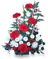 CANDY CANE HO HO HO Christmas Arrangement