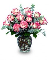 A DAZZLING DOZEN Pink Bi-Colored Roses in Prospect, CT | MARGOT'S FLOWERS & GIFTS