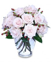 RARE BEAUTY Bouquet of Pale Pink Roses in Bath, NY | VAN SCOTER FLORISTS
