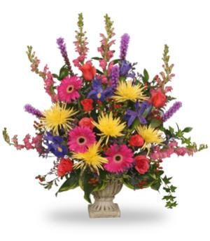 COLORFUL CONDOLENCES TRIBUTE  Funeral Flowers in Woodbridge, ON | THOUGHTFUL GIFTS & FLOWERS