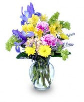 SPLASH OF SPRING Flowers in a Vase in Mount Pleasant, SC | BELVA'S FLOWER SHOP