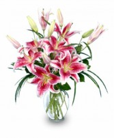 PURELY STARGAZERS Flower Vase in Jasper, IN | WILSON FLOWERS, INC