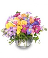 SPRINGTIME POTPOURRI of Fresh Flowers in Katy, TX | KD'S FLORIST & GIFTS