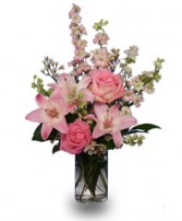 PRECIOUS PINK ARRIVAL Flowers for Baby Girl in Bryant, AR | FLOWERS & HOME OF BRYANT