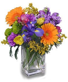 CELEBRATE THE DAY Fresh Flowers in Mcminnville, OR | POSEYLAND FLORIST