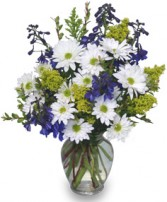 LAZY DAISY & DELPHINIUM Just Because Flowers in Pembroke, MA | CANDY JAR AND DESIGNS IN BLOOM