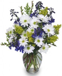 LAZY DAISY & DELPHINIUM Just Because Flowers in Ottawa, ON | MILLE FIORE FLORAL