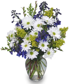 Lazy Daisy & Delphinium Just Because Flowers
