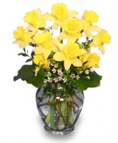 HERE COMES THE SUN Bouquet of Daffodils in Roanoke, VA | BASKETS & BOUQUETS FLORIST