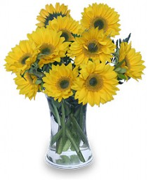 HELLO SUNSHINE! Vase of Flowers in Ottawa, ON | MILLE FIORE FLORAL