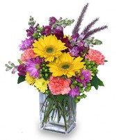 FESTIVAL OF COLORS Flower Bouquet in Walpole, MA | VILLAGE ARTS & FLOWERS