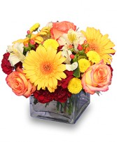 AUTUMN AFFECTION Floral Bouquet in Jasper, IN | WILSON FLOWERS, INC