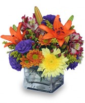 SIMPLE PLEASURES Floral Arrangement in Norfolk, VA | NORFOLK WHOLESALE FLORAL