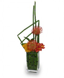 HIGH-STYLE HORSETAIL Father's Day Flowers