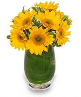SUNNY DAY GREETINGS Vase of Flowers in Bath, NY | VAN SCOTER FLORISTS 