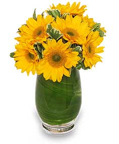Sunny Day Greetings Vase of Flowers in Waterbury, CT | GRAHAM'S FLORIST