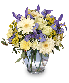 Welcome Baby Boy Flower Arrangement in Pensacola, FL | JUST JUDY'S FLOWERS, LOCAL ART & GIFTS