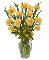 SPRING DAFFODILS Arrangement in Burton, MI | BENTLEY FLORIST INC.