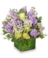 CHILLED OUT Bouquet of Flowers in Milton, MA | MILTON FLOWER SHOP, INC