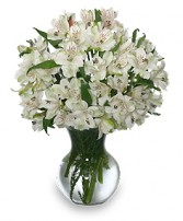 FLEECY WHITE Flower Arrangement in Michigan City, IN | WRIGHT'S FLOWERS AND GIFTS INC.