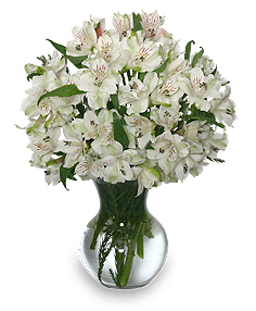 FLEECY WHITE Flower Arrangement in Mcminnville, OR | POSEYLAND FLORIST