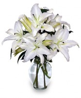 CASA BLANCA LILIES Arrangement in Zachary, LA | FLOWER POT FLORIST