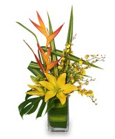 5-STAR FLOWERS Vase Arrangement in Bath, NY | VAN SCOTER FLORISTS