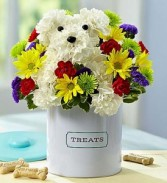 A-Dog-Able Keepsake Container