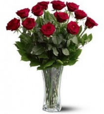 A Dozen Premium Red Roses  Fresh Arrangement