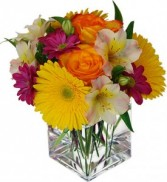 Anytime Bouquet in Bracebridge, ON | CR Flowers & Gifts ~ A Bracebridge Florist