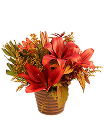 Autumnal Floral Arrangement