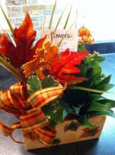 Autumn Dish Garden in Bracebridge, ON | CR Flowers & Gifts ~ A Bracebridge Florist