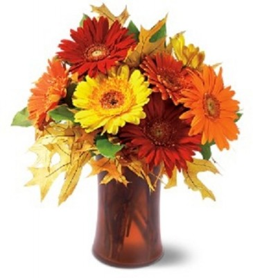 Fall Gerbera Daisy Bouquet Autumn Gerbera Daisy Bouquet