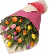 AWAKENINGS TULIP GIFT WRAPS BOUQUET in Clarksburg, MD | GENE'S FLORIST & GIFT BASKETS