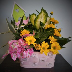 Garden Delight Indoor Plant Basket in Winter Springs, FL | WINTER SPRINGS FLORIST AND GIFTS