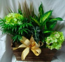 Basket with plants and silk flowers in it!
