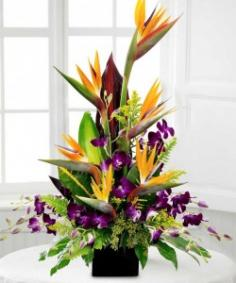 BIRDS IN PARADISE Tropical Flower Arrangement in Burbank, CA | LA BELLA FLOWER & GIFT SHOP