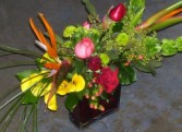 Birds of Paradise Fresh floral in Dallas, TX | MY OBSESSION FLOWERS & GIFTS