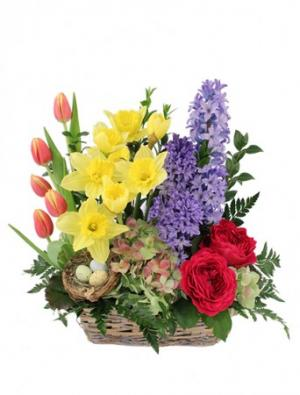 Blissful Garden Flower Basket in Richland, WA | ARLENE'S FLOWERS AND GIFTS