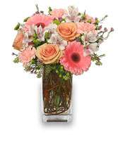 BLOOMING WITH ADMIRATION Bouquet in Worthington, OH | UP-TOWNE FLOWERS & GIFT SHOPPE