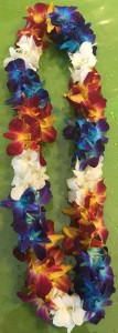 Blue White & Yellow Double Orchid Lei