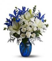 Blues Blues  Spring Flower Delivery in Washington DC in Washington, DC | CONVENTION FLORAL