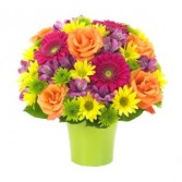 Brilliance Bouquet in Windsor, ON | K. MICHAEL'S FLOWERS & GIFTS