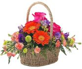 BRILLIANT BASKET OF FLOWERS in Rockville, MD | ROCKVILLE FLORIST & GIFT BASKETS