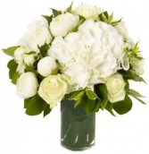 BRILLIANT WHITE ARRANGEMENT in Rockville, MD | ROCKVILLE FLORIST & GIFT BASKETS