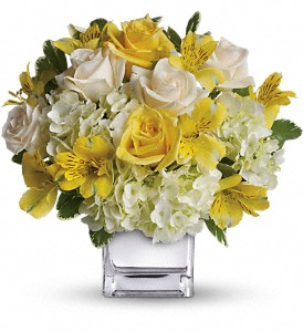 BURST OF SUNSHINE Floral Arrangement