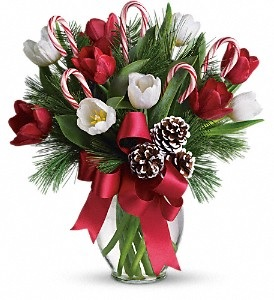 C154 Red & White Tulips Bouquet