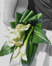 Calla's Rimmed in Gold Wedding Bouquets in Bracebridge, ON | CR Flowers & Gifts ~ A Bracebridge Florist